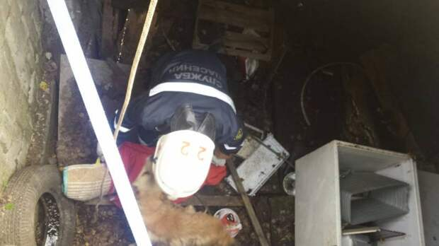 В Кунгуре спасли собаку, которая провалилась в заброшенный гараж и три дня там просидела