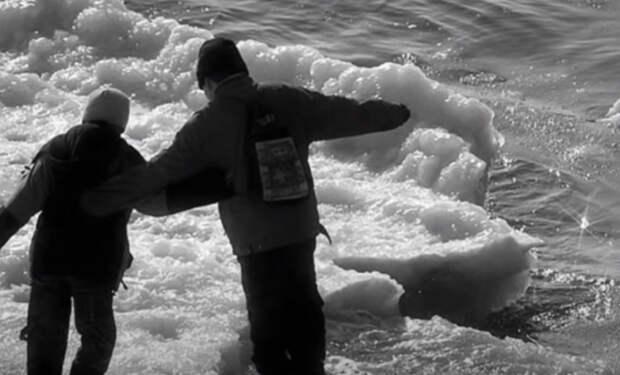 Лед на реке под школьниками провалился, но на помощь к людям вовремя пришел волк