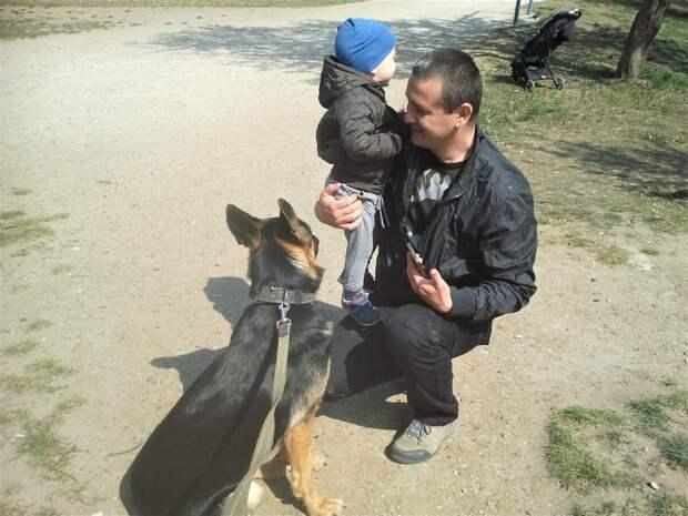 Незнакомый мужчина попросил сфотографировать ребёнка рядом с собакой. Маме показать. Я заодно и на свой телефон запечатлела.