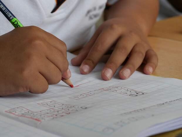 В России не намерены вводить дистанционное обучение в школах