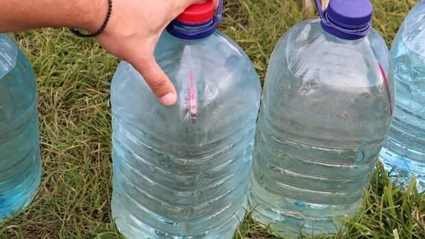 Умный капельный полив бутылками: бесплатно и просто