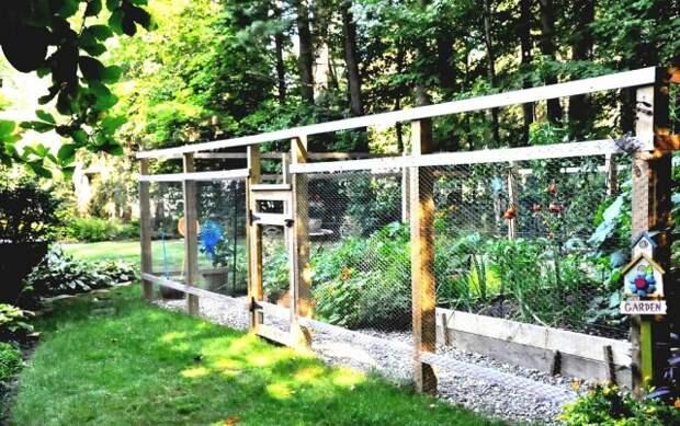 Забор вокруг огорода