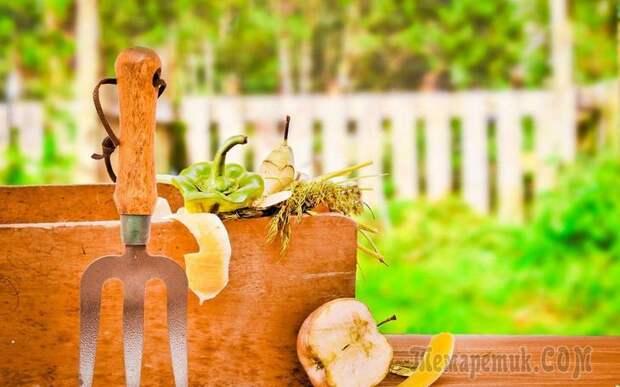 Можно ли класть в компостную яму гнилые яблоки и другие подгнившие продукты