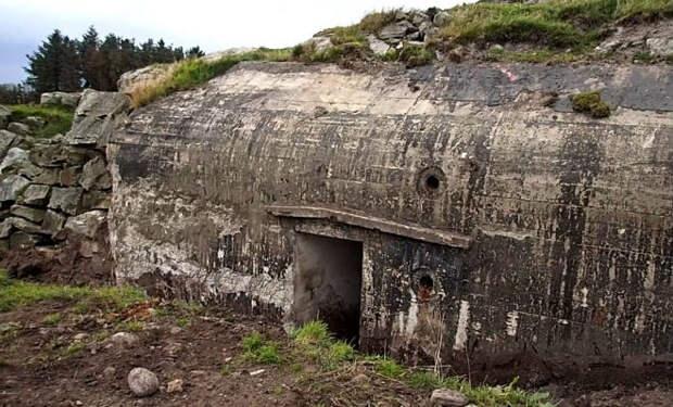 Затопленный бункер из чащи леса: черным копателям понадобился акваланг