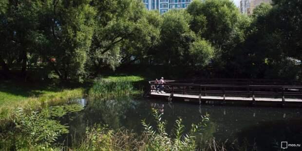 Бесплатные экомероприятия пройдут в парке «Покровское-Стрешнево»