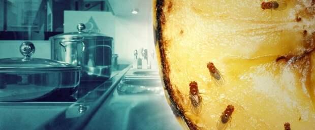 Полезные советы. Кухня. (8 фото)