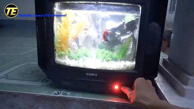 Как сделать аквариум из старого телевизора
