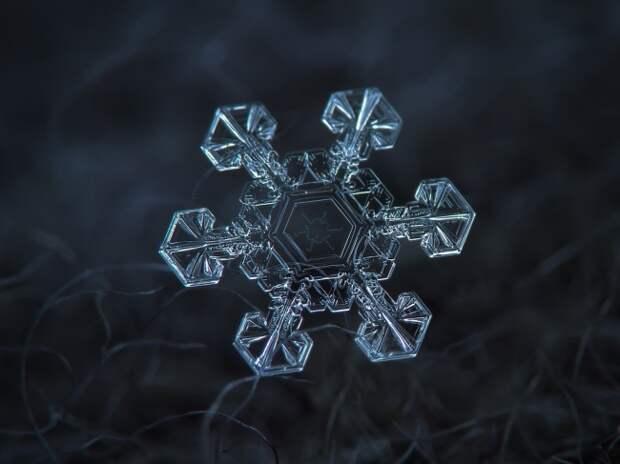 Макрофотографии снежинок