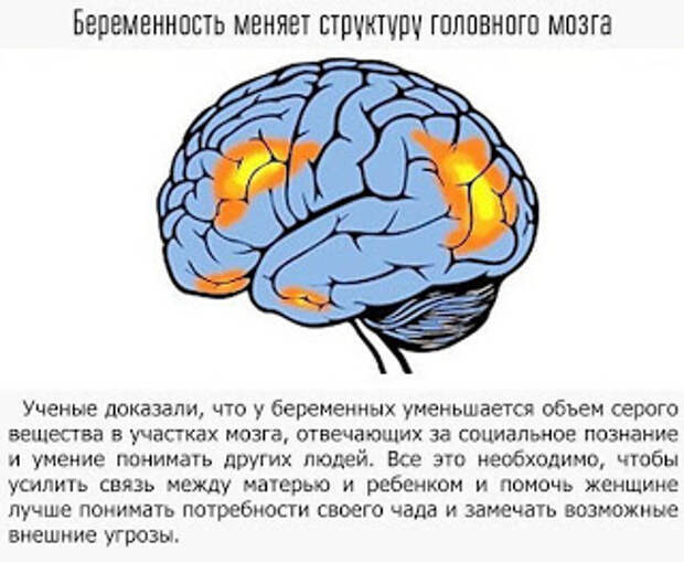 Как мы влияем на свой мозг