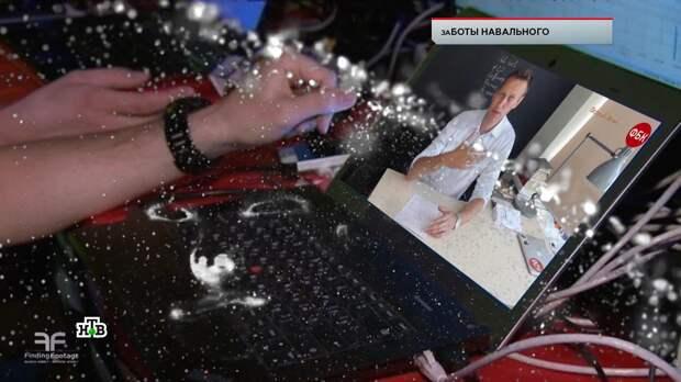 Пациенты Кащенко и белые медведи: кого заметили среди «сторонников» Навального