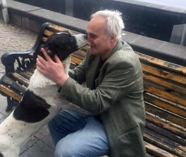 Они встретились спустя 3 года! Хозяин нашел потерявшегося пса, и эта встреча тронула тысячи людей…