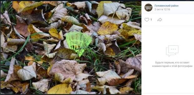 Фото дня: оставленный в осенней листве воланчик