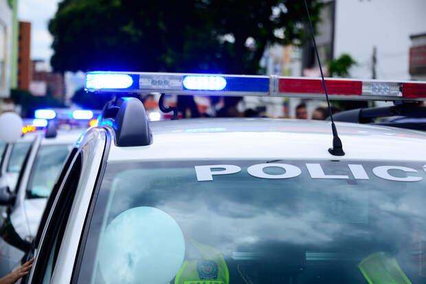 Голый мужчина в США угнал и разбил полицейскую машину