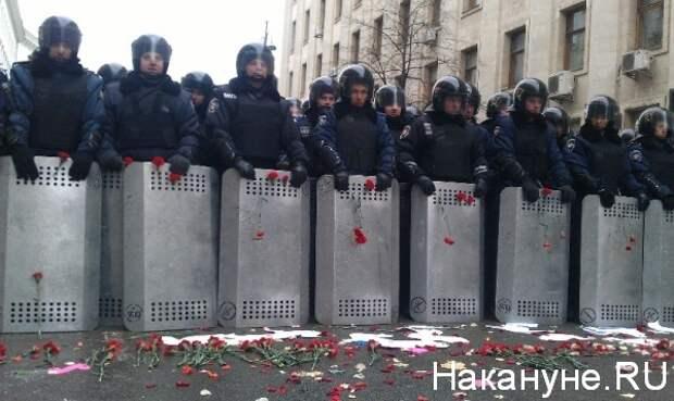 цветы, милиция, майдан, киев, декабрь, 2013|Фото:Накануне.RU