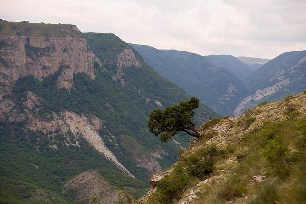Круче, чем Великий каньон - Сулакский каньон Сулакский каньон, дагестан, фоторепортаж