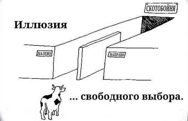 Психологический прием: иллюзия выбора.