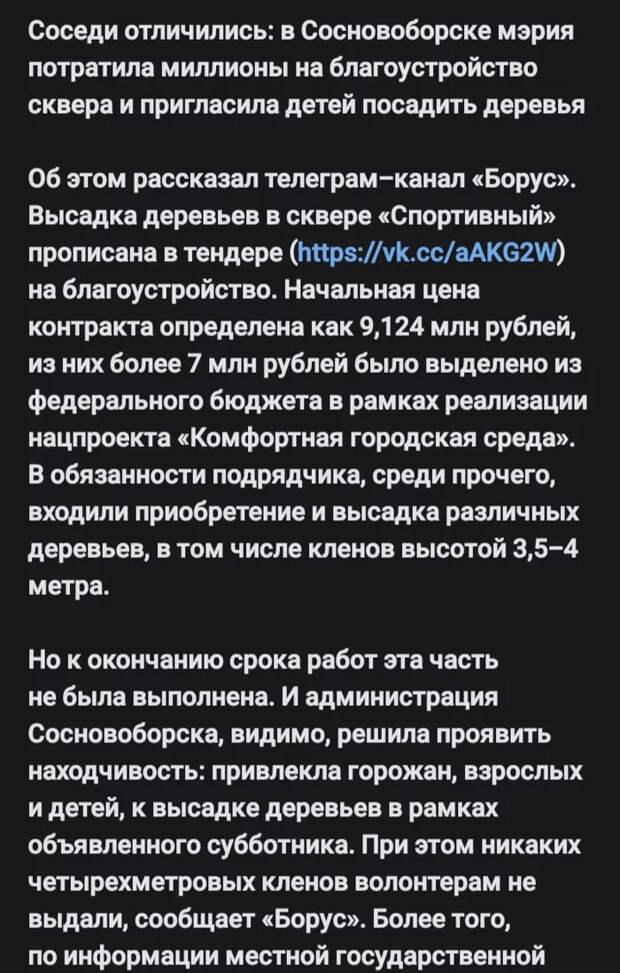 Пригласили детей на благоустройство Сосновоборск, Благоустройство, Субботник, Длиннопост