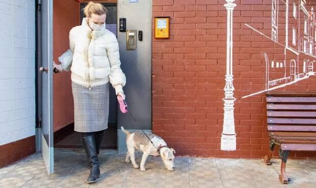Выходить из дома в режиме самоизоляции нельзя без веской причины Фото с сайта mos.ru