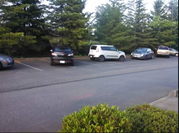 Парковка напротив салона красоты? плевать на всё, пофигисты, прикол, юмор