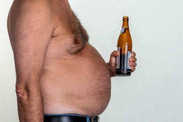 Помимо женского полового гормона эстрогена, пиво содержит лептин. Лептин обычно замедляет аппетит. При избыточном весе наблюдается постоянный высокий уровень лептина, так что клетки в какой-то момент перестают на него реагировать. Развивается устойчивость к лептину и возникает постоянное чувство голода.