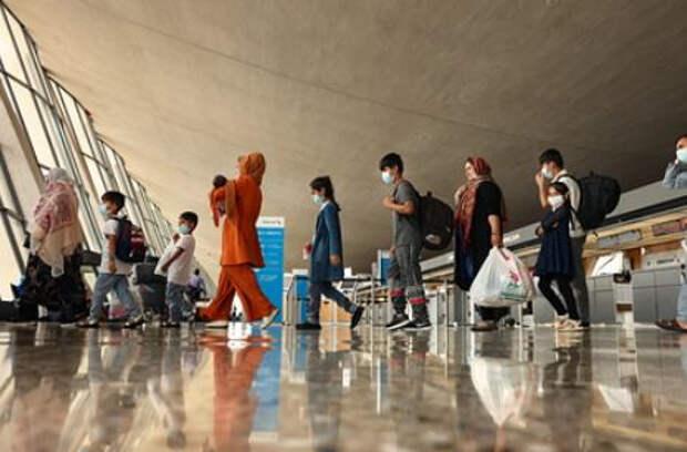 Афганских беженцев сравнили со среднестатистическими украинцами