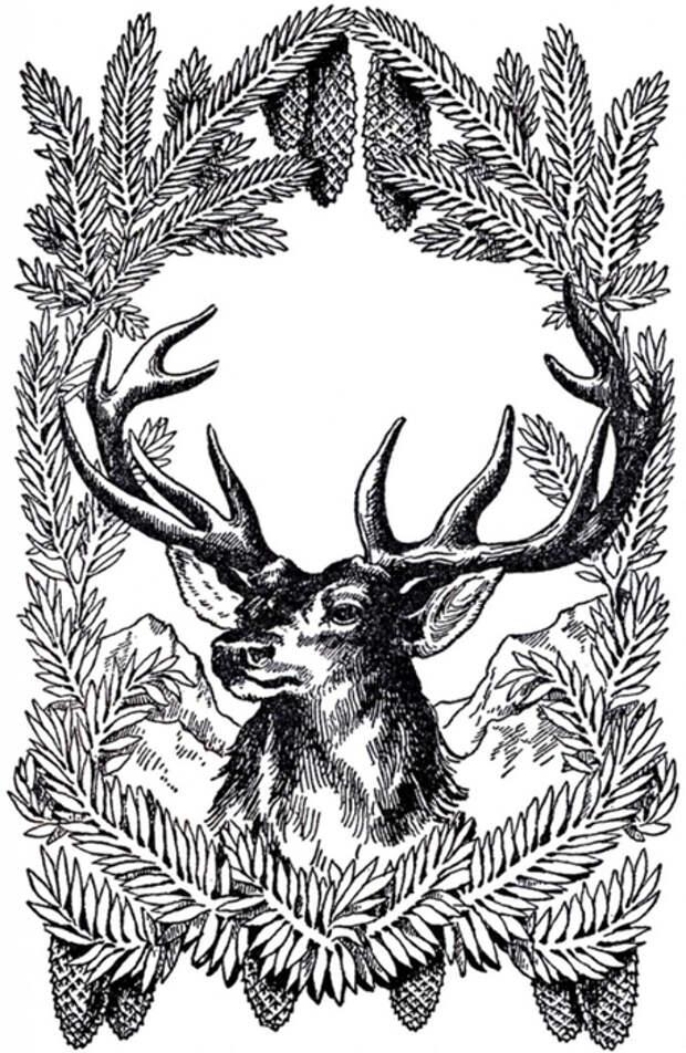 Vintage-Christmas-Deer-Image-GraphicsFairy-667x1024 (455x700, 303Kb)