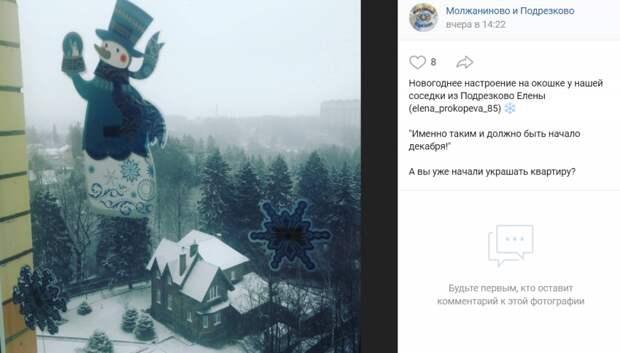 Фото дня: жительница Подрезкова создала новогоднее настроение
