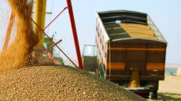 Нефть продается дешевле пшеницы