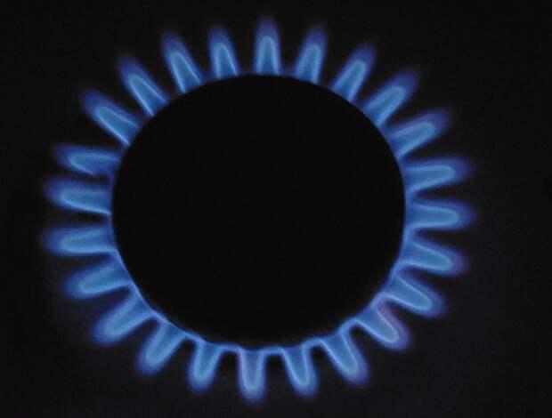 Россия фиксирует в этом году рекордные показатели потребления газа - Новак