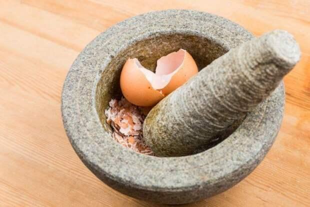 10 причин, почему не стоит выбрасывать яичную скорлупу