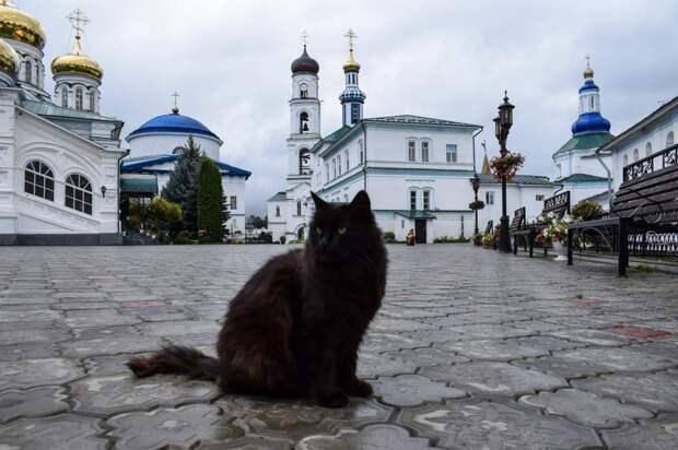 Татарстан. Место слияния.