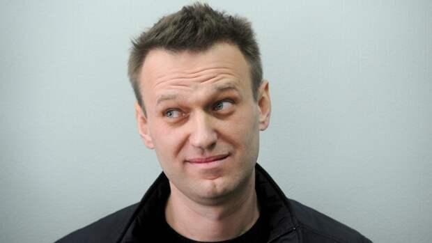 Карнаухов предрек провал возможных протестов соратников Навального на фоне выборов