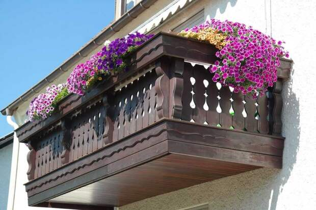 balcon cvety min