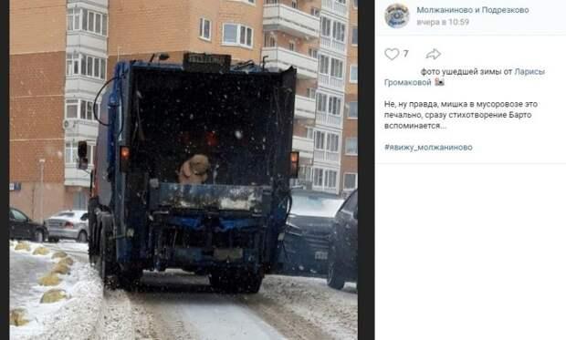 Фото дня: плюшевого хищника в мусоровозе запечатлели на Синявинской