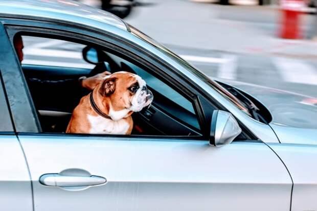 Открытые окна при езде на большой скорости повышают расход бензина. | Фото: kolobok.ua.
