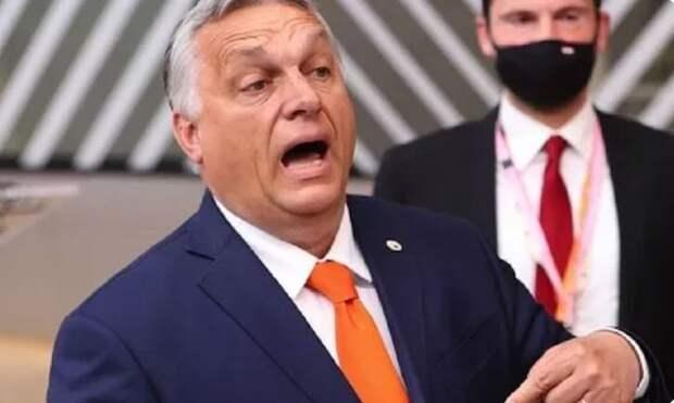 «Диктуют нам, как жить!» В ЕС разгорелся скандал из-за того, что Венгрия взорвала «колонизаторский» Брюссель