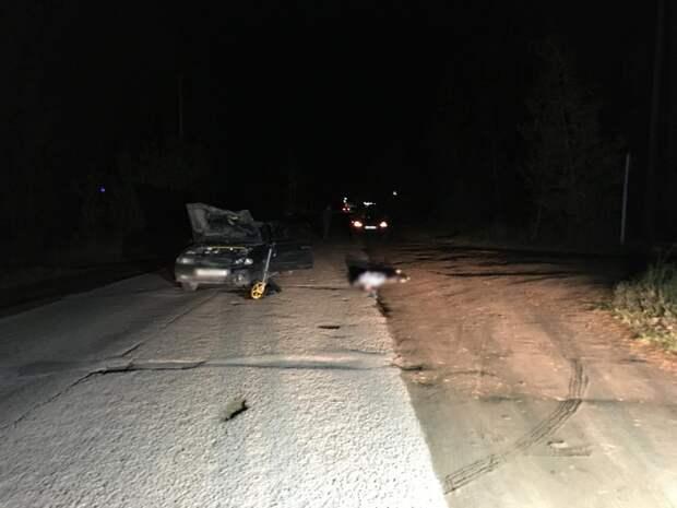 На дороге в Удмуртии насмерть сбили мужчину