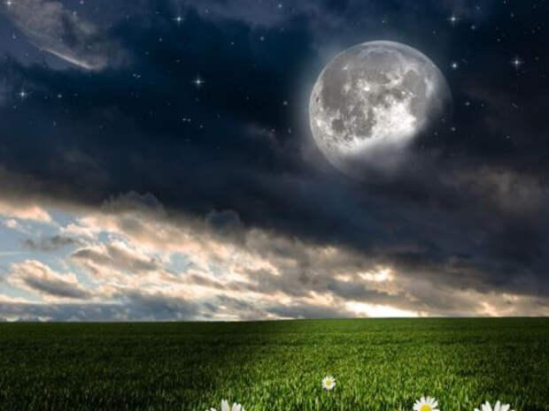 Полнолуние, новолуние, убывающая и растущая Луна в августе