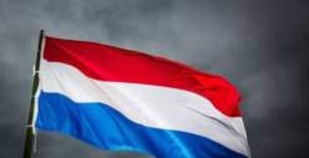 В МИД Нидерландов запретили танцевать