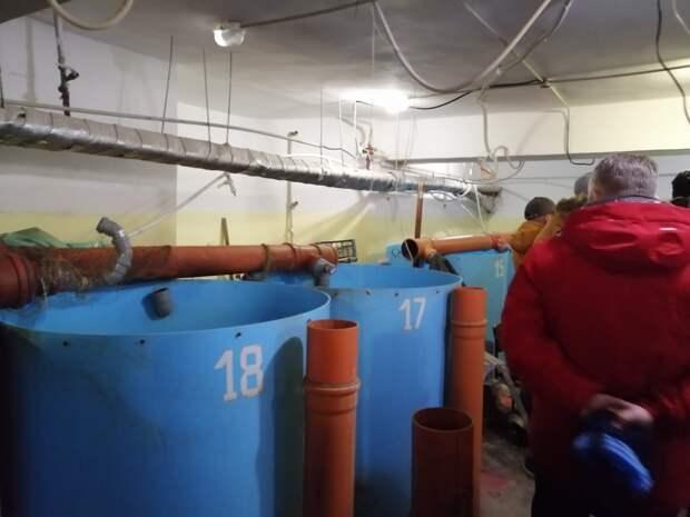 Нелегальную рыбную ферму в подвале дома закрыли на 10 суток в Московском районе Нижнего Новгорода
