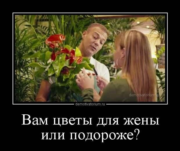 Демотиватор Вам цветы для жены или подороже?