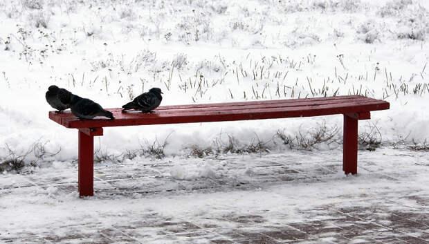 Снег и до минус 6 градусов ожидается в Подольске в воскресенье