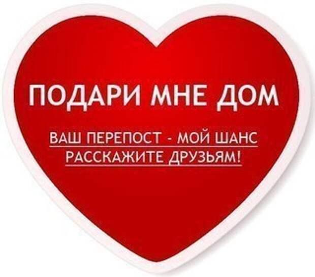 Подарите малышу любовь и дом, и он много раз вам докажет, что Вы были правы :)