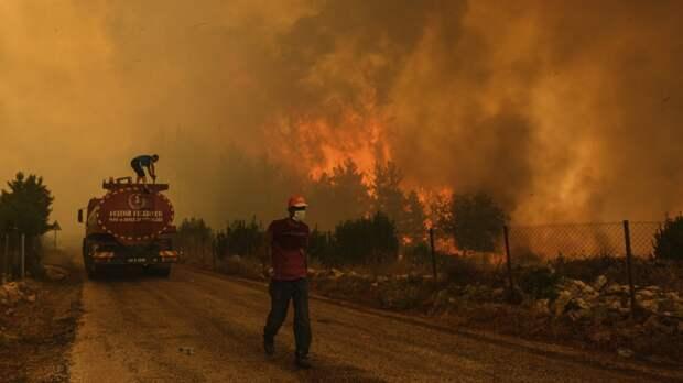 Бывший мэр Анкары рассказал, кому были выгодны пожары в Турции