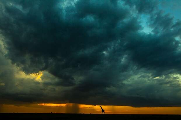 afrikansskie zakaty 13 Потрясающие африканские закаты от Пола Гольдштейна