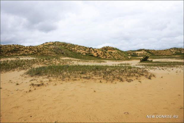 Бугристые пески окрестностей станицы Вёшенской
