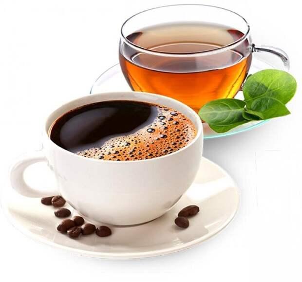 Чай и кофе могут вызвать обезвоживание организма. / Фото: sp.bvf.ru