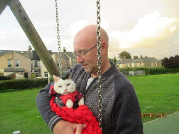 Сэр Тоби Тоблероне – кот, которому можно позавидовать