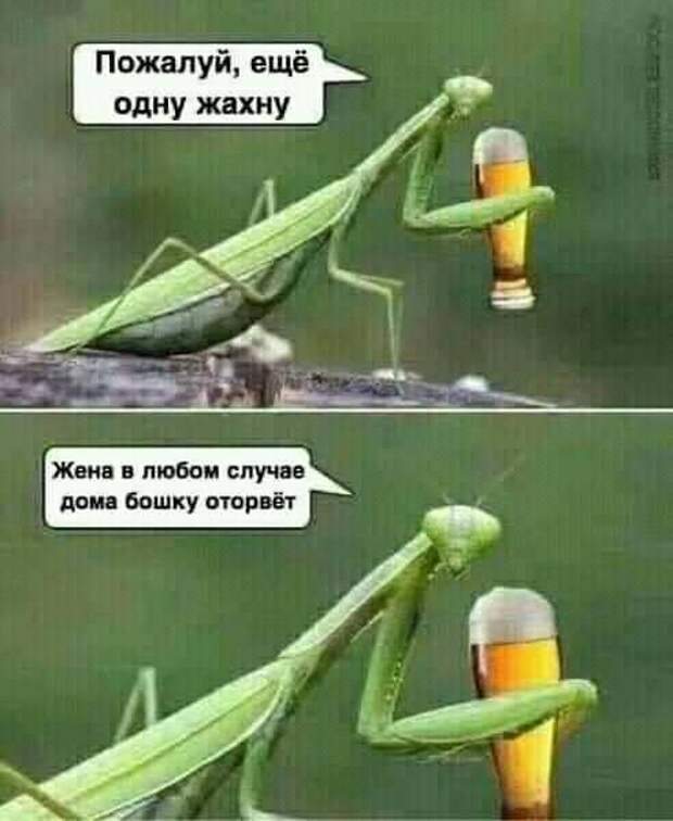 Один банкир звонит другому:  - Михал Иваныч, ты на Крещение будешь купаться?...