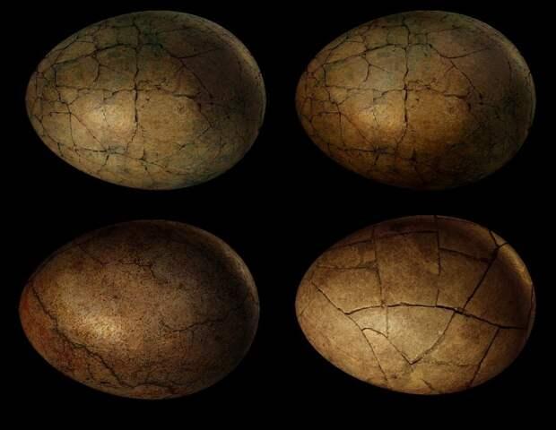 Сенсационная находка: учёные нашли на Марсе останки динозавров
